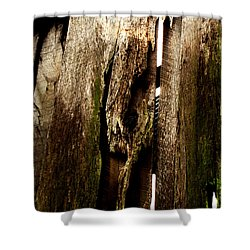 Texture Series Shower Curtain by Amanda Barcon