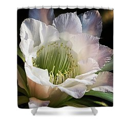 Shower Curtain featuring the photograph The Beauty Of White  by Saija Lehtonen