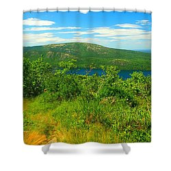 White Mountain's  Shower Curtain