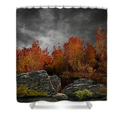 4004 Shower Curtain by Peter Holme III