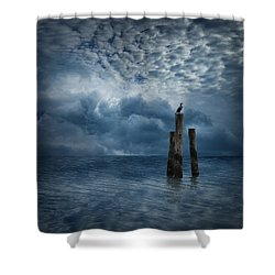 4008 Shower Curtain by Peter Holme III