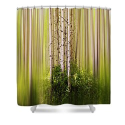 4012 Shower Curtain by Peter Holme III