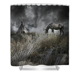 4099 Shower Curtain by Peter Holme III