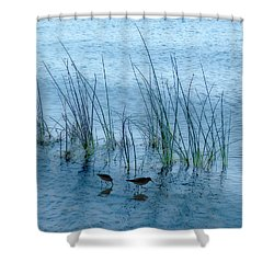 4177 Shower Curtain by Peter Holme III
