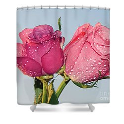 Two Roses Shower Curtain by Elvira Ladocki