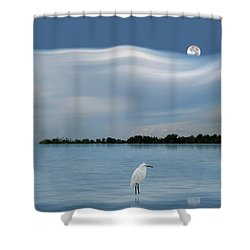 4218 Shower Curtain by Peter Holme III