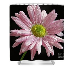 Pink Flower Shower Curtain by Elvira Ladocki