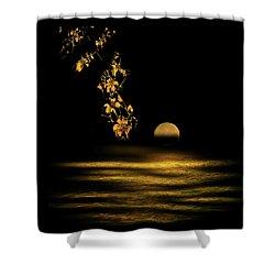 4320 Shower Curtain