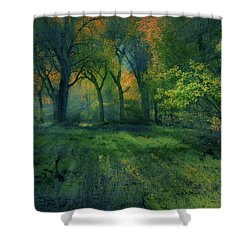 Shower Curtain featuring the photograph 4363 by Peter Holme III