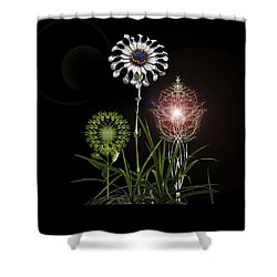 Shower Curtain featuring the photograph 4369 by Peter Holme III