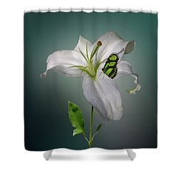 Shower Curtain featuring the photograph 4371 by Peter Holme III