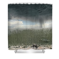 Shower Curtain featuring the photograph 4375 by Peter Holme III