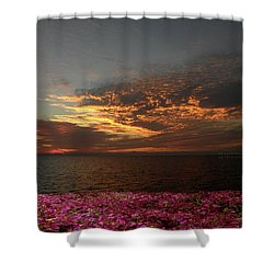 Shower Curtain featuring the photograph 4380 by Peter Holme III