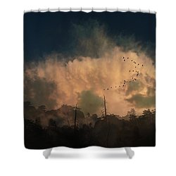 Shower Curtain featuring the photograph 4382 by Peter Holme III