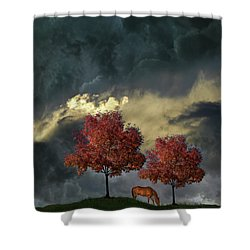Shower Curtain featuring the photograph 4384 by Peter Holme III