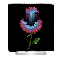 Shower Curtain featuring the photograph 4389 by Peter Holme III