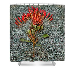 Shower Curtain featuring the photograph 4400 by Peter Holme III