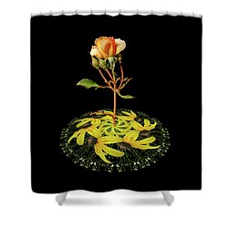 Shower Curtain featuring the photograph 4407 by Peter Holme III
