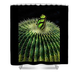Shower Curtain featuring the photograph 4409 by Peter Holme III