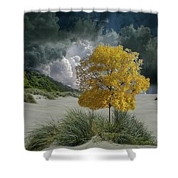 Shower Curtain featuring the photograph 4422 by Peter Holme III