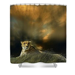 Shower Curtain featuring the photograph 4452 by Peter Holme III