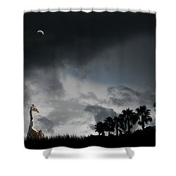 Shower Curtain featuring the photograph 4458 by Peter Holme III