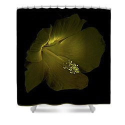 Shower Curtain featuring the photograph 4460 by Peter Holme III