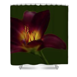 Shower Curtain featuring the photograph 4479 by Peter Holme III