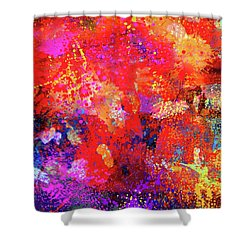 Abstract Composition Shower Curtain