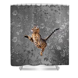 Bengal Cat Jumping Shower Curtain