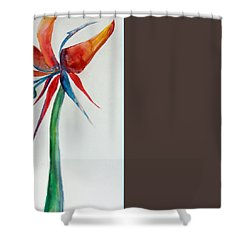 A Bird Of Paradise Shower Curtain