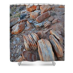 Shower Curtain featuring the photograph Colorful Cove In Valley Of Fire by Ray Mathis