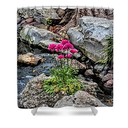 Shower Curtain featuring the photograph Dallas Arboretum by Diana Mary Sharpton