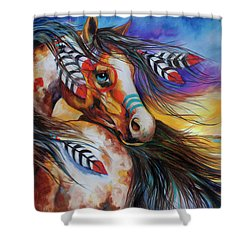 5 Feathers Indian War Horse Shower Curtain