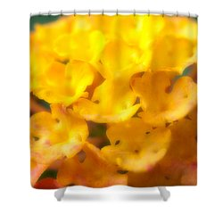 Flower Shower Curtain by Sebastian Musial