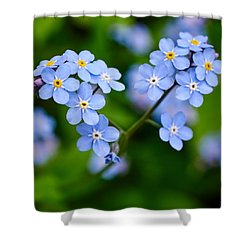 Forget Me Not Shower Curtain by Jouko Lehto