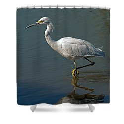Snowy Egret Shower Curtain by Tam Ryan