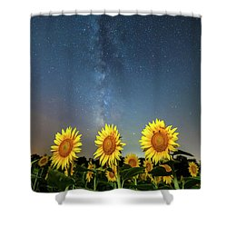 Sunflower Galaxy IIi Shower Curtain