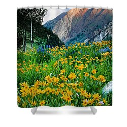 Wasatch Mountains Shower Curtain by Utah Images