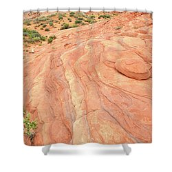 Shower Curtain featuring the photograph Wave Of Color In Valley Of Fire by Ray Mathis