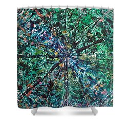 51-offspring While I Was On The Path To Perfection 51 Shower Curtain
