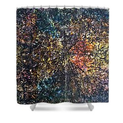 55-offspring While I Was On The Path To Perfection 55 Shower Curtain