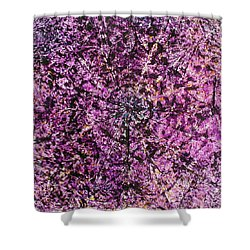 56-offspring While I Was On The Path To Perfection 56 Shower Curtain