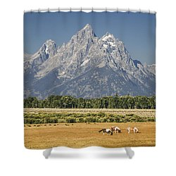 #5687 - Wyoming Shower Curtain