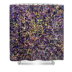 57-offspring While I Was On The Path To Perfection 57 Shower Curtain