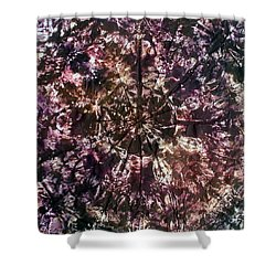 58-offspring While I Was On The Path To Perfection 58 Shower Curtain
