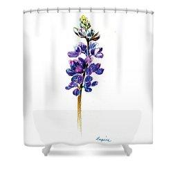 5x7auto Lupine Shower Curtain