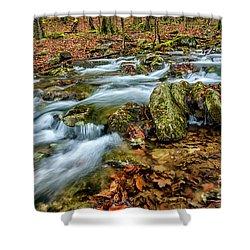 Shower Curtain featuring the photograph Aldrich Branch Monongahela National Forest by Thomas R Fletcher