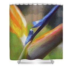 6 Bird Of Paradise Impression Finish Digital Art By Linda Brody