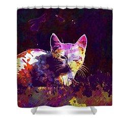 Shower Curtain featuring the digital art Cat Eye Injury One Eye Village  by PixBreak Art